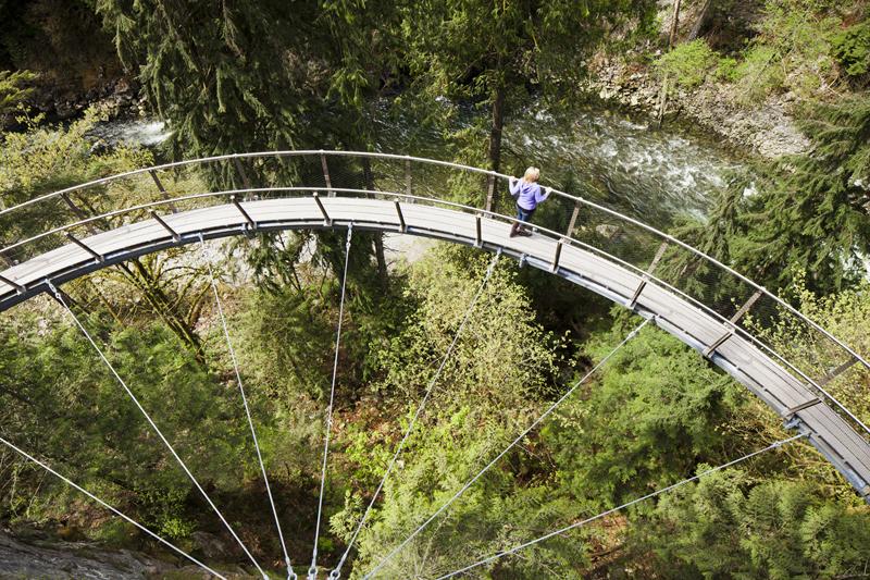 Capilano Suspension Bridge Treewalk Silver City Galvanizing